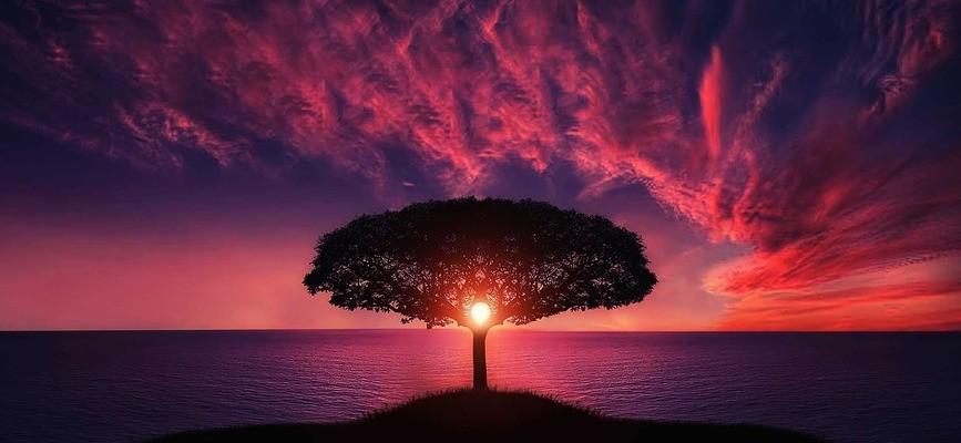 медитация, мир, спокойствие, счастье