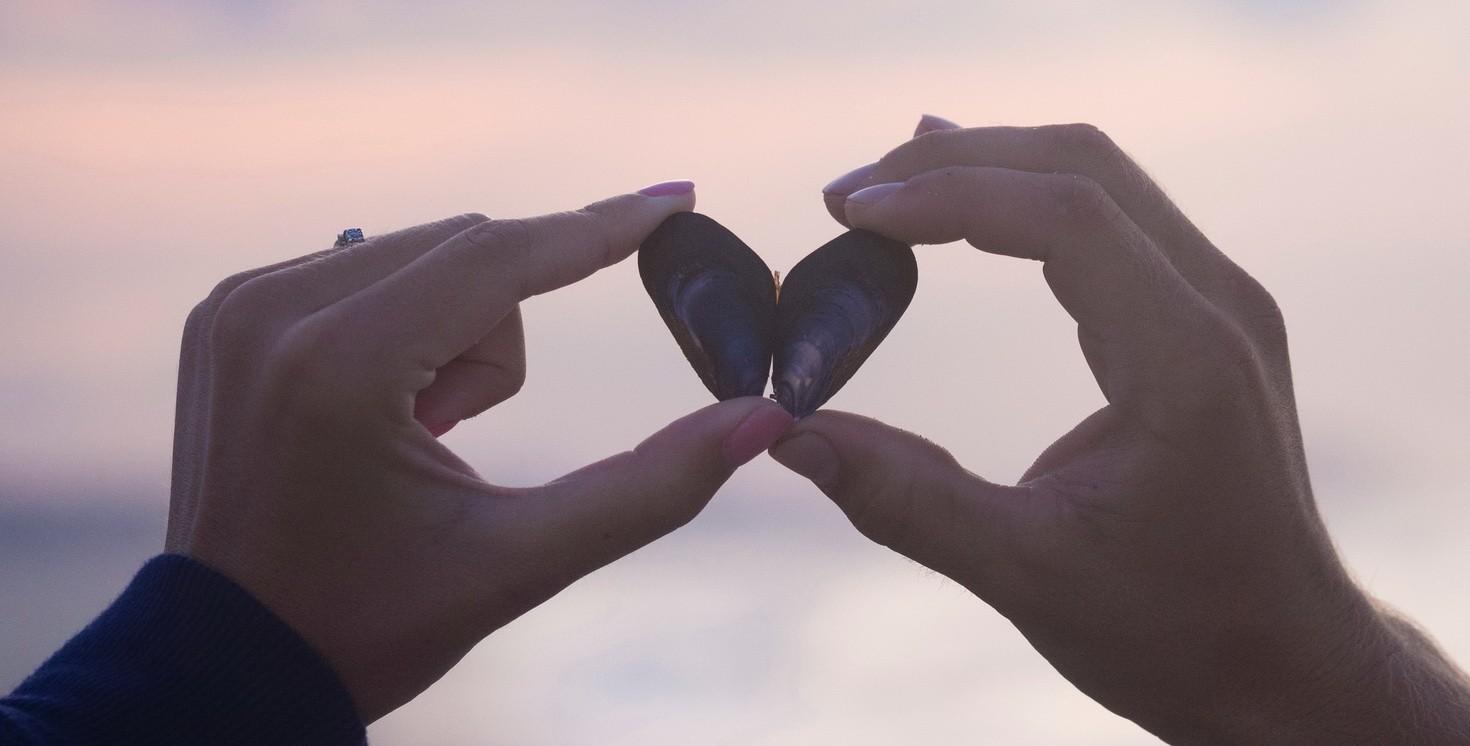 поднять отношения до 5 измерения, близнецовые пламена, любовь, духовное партнерство, руки влюбленных, ракушка в руках