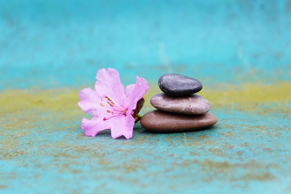 покой, счастливая жизнь, медита